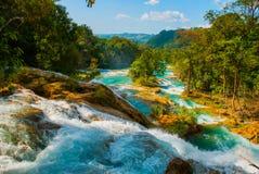 Krajobraz z bajecznie siklawy Agua Azul, Chiapas, Palenque, Meksyk Zdjęcie Stock
