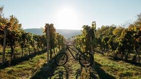 Krajobraz z czarnym bicyklem Fotografia Stock
