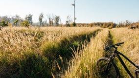 Krajobraz z czarnym bicyklem Zdjęcie Stock