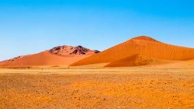 Krajobraz z czerwonymi diunami Namib pustynia, Namibia, Afryka Obraz Stock