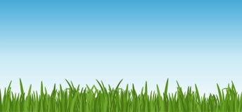 Krajobraz z dreen trawy przeciw niebieskiego nieba tłu trawa gazon przy przedpolem i liście Wektorowy Illustartion ilustracji