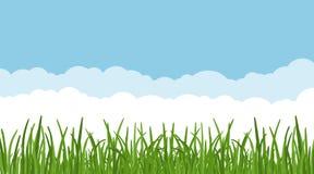 Krajobraz z dreen trawy przeciw niebieskiemu niebu i chmurnieje tło trawa gazon przy przedpolem i liście wektor ilustracji