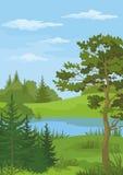 Krajobraz z drzewami i rzeką Fotografia Royalty Free