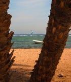 Krajobraz z dwa brązem drzewni bagażniki daktylowe palmy w przedpolu i tło łodzi rybackiej kayserfer i białej, spokój Zdjęcie Royalty Free