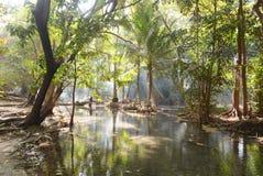 Krajobraz z dymem Zdjęcie Stock