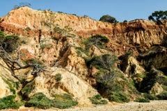 Krajobraz z falezą i diunami przy plażą blisko Albufeira Port Zdjęcia Stock