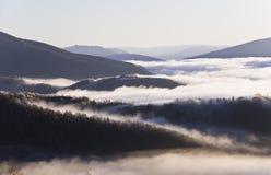 Krajobraz z górami, lasem i mgłą, Fotografia Royalty Free