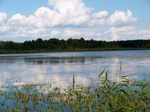 krajobraz z jeziorem w letnim dniu Zdjęcia Stock