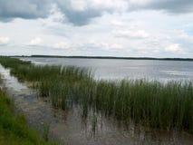 krajobraz z jeziorem w letnim dniu Obrazy Stock