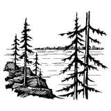 Krajobraz z jeziornymi i świerkowymi pierwszymi planami obraz royalty free