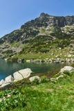 Krajobraz z kolorów żółtych kwiatami i Dzhangal osiągamy szczyt, Pirin góra Obraz Stock