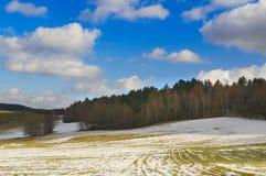 Krajobraz z lasem, śniegiem, łąkami w wiośnie i dramatem, zdjęcia royalty free