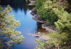Krajobraz z lasowym jeziorem zakrywającym z czochrami i odbija niebieskie niebo fotografia stock