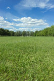 Krajobraz z niebieskim niebem i zieloną trawą Obrazy Stock