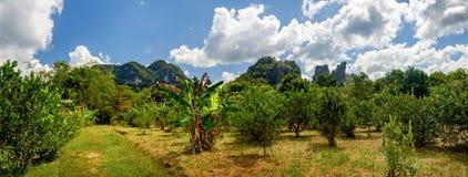 Krajobraz z obłocznym niebem, Khao Sok park narodowy, Tajlandia Zdjęcie Stock