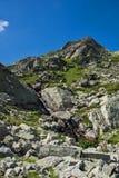 Krajobraz z rzeką blisko Siedem Rila jezior w Rila górze, Bułgaria Zdjęcia Stock