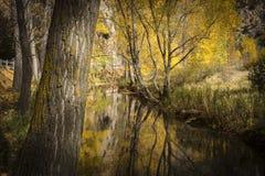 Krajobraz z rzeką w jesieni Zdjęcie Royalty Free