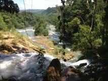 krajobraz z siklawami Agua Azul w Chiapas Obraz Stock