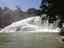 krajobraz z siklawami Agua Azul w Chiapas Fotografia Stock