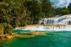 Krajobraz z siklawy Agua Azul, Chiapas, Palenque, Meksyk Fotografia Royalty Free