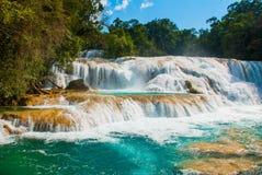 Krajobraz z siklawy Agua Azul, Chiapas, Palenque, Meksyk Zdjęcia Stock