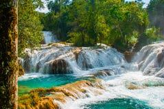Krajobraz z siklawy Agua Azul, Chiapas, Palenque, Meksyk Obrazy Stock