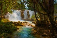 Krajobraz z siklawy Agua Azul, Chiapas, Palenque, Meksyk Fotografia Stock