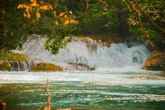 Krajobraz z siklawy Agua Azul, Chiapas, Palenque, Meksyk Zdjęcia Royalty Free