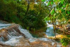 Krajobraz z siklawy Agua Azul, Chiapas, Palenque, Meksyk Ogromni kamienie na których płynie woda Fotografia Stock