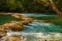 Krajobraz z siklawy Agua Azul, Chiapas, Palenque, Meksyk Ogromni kamienie na których płynie woda Obraz Stock