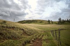 Krajobraz z sposobem i drzewami zdjęcie royalty free