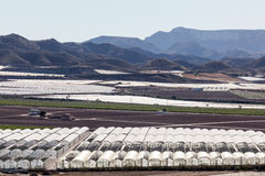 Krajobraz z szklarnianymi plantacjami Obraz Stock