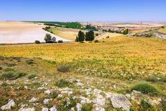 Krajobraz z wioską wśród poly Zdjęcia Stock