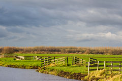 Krajobraz z wodą i żywopłotami Obrazy Stock