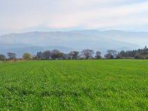 Krajobraz z wspaniałym tłem Obrazy Royalty Free