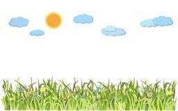 Krajobraz z zieloną trawą i słońcem ilustracji