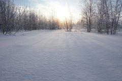 Krajobraz Zamarznięty las Zdjęcie Royalty Free