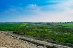 Krajobraz, zieleni pola z niebieskim niebem zdjęcia stock