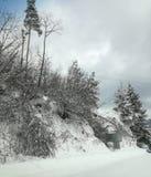 krajobrazowa śnieżna opowieści drzewa zima Obraz Stock