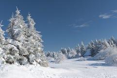 krajobrazowa śnieżna zima Obrazy Stock