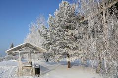 krajobrazowa śnieżna zima Zdjęcie Stock