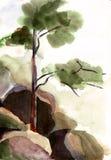 krajobrazowa akwarela Zdjęcia Stock