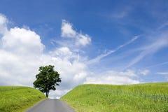 krajobrazowa droga Zdjęcia Royalty Free
