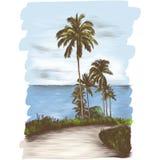 Krajobrazowa droga przez zwrotników z drzewkami palmowymi na stronie denny tło ilustracja wektor