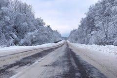 Krajobrazowa droga w zima lesie z śniegiem zakrywającym Zdjęcie Royalty Free