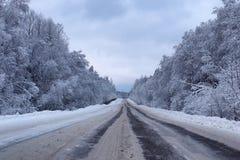 Krajobrazowa droga w zima lesie z śniegiem zakrywającym Zdjęcie Stock