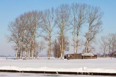 krajobrazowa drzew biel zima Obraz Royalty Free