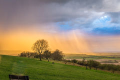 Krajobrazowa fotografia Zdjęcie Royalty Free