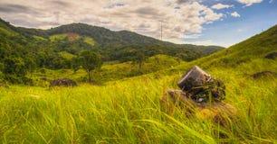 Krajobrazowa fotografia Piękny Zdjęcia Stock