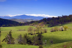 krajobrazowa gór Romania wiosna Zdjęcie Stock